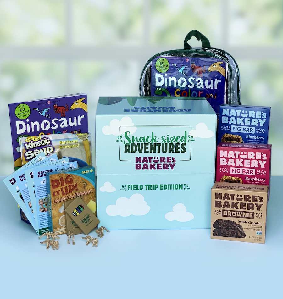nature's bakery dinosaur kit